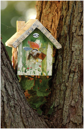 birdhouse_web2